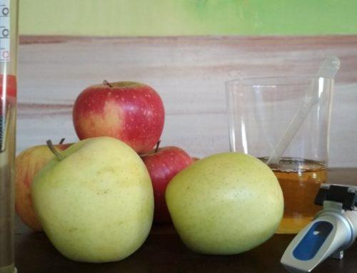 Misurazione e analisi del sidro: zuccheri, pH e acido malico