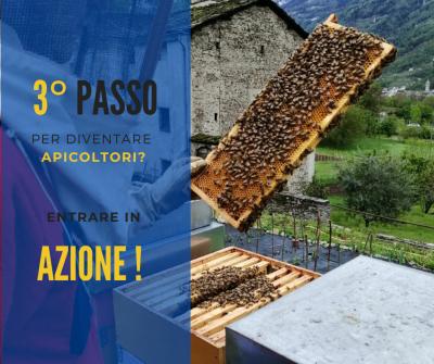 terzo-passo-apicoltore