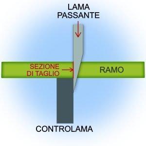 schema-taglio-bypass